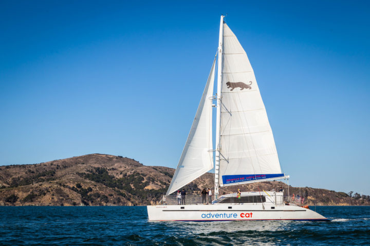 Adventure Cat sailing in front of Angel Island